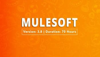 mulesoft training online
